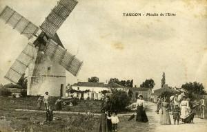 Le Moulin de l'Etier à Taugon. Marais poitevin