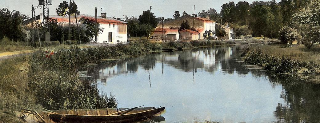 Coulon, lieu-dit Préplot, la Sèvre Niortaise
