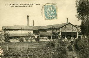 La Grève-sur-Mignon - Vue générale de la Tuilerie prise du Chemin de Fer. Marais poitevin